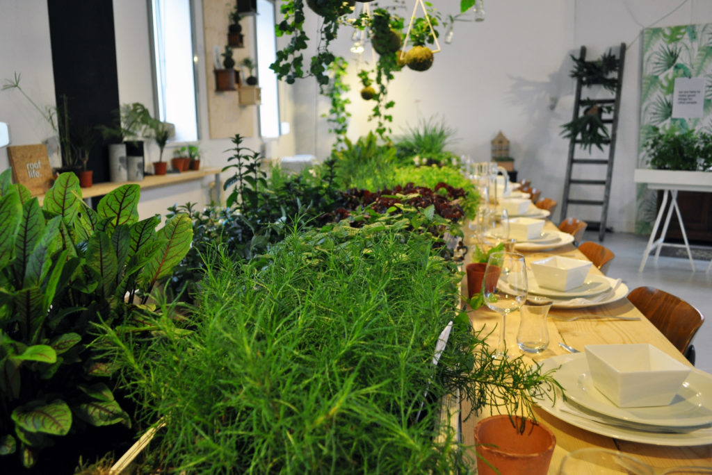 Green Table Dinner - Groen food concept.