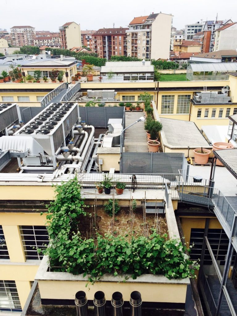A private roofgarden in Turin